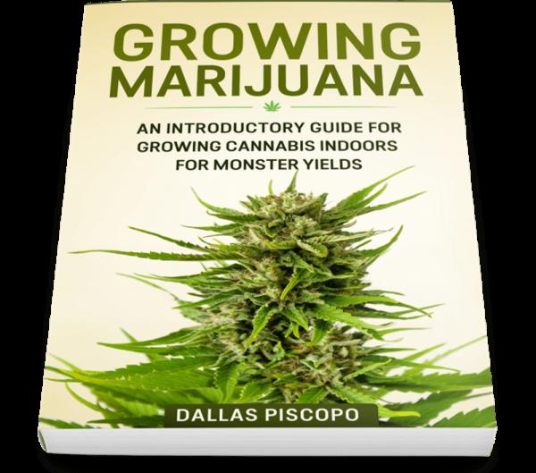 Buy Growing Marijuana Ebook