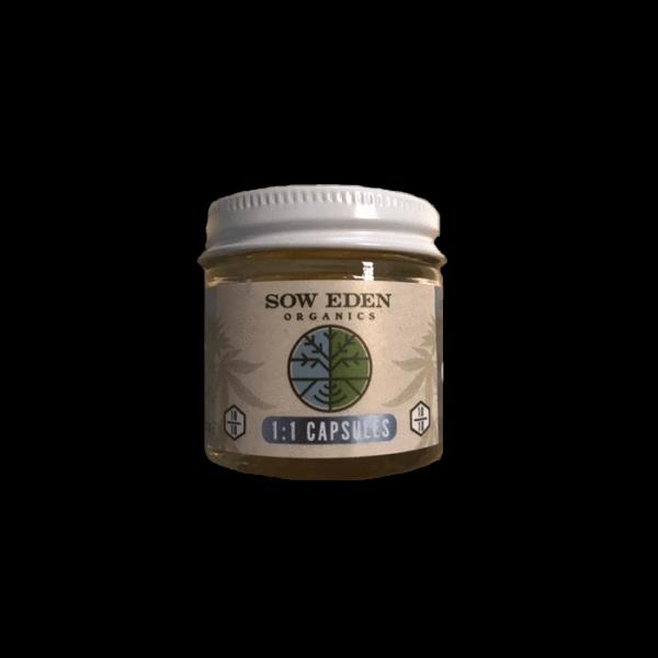 Buy 1:1 GelCaps online