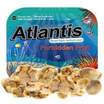 Buy Psilocybe Atlantis online