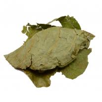 Banisteripsis Caapi leaves (Muricata)(100grams)