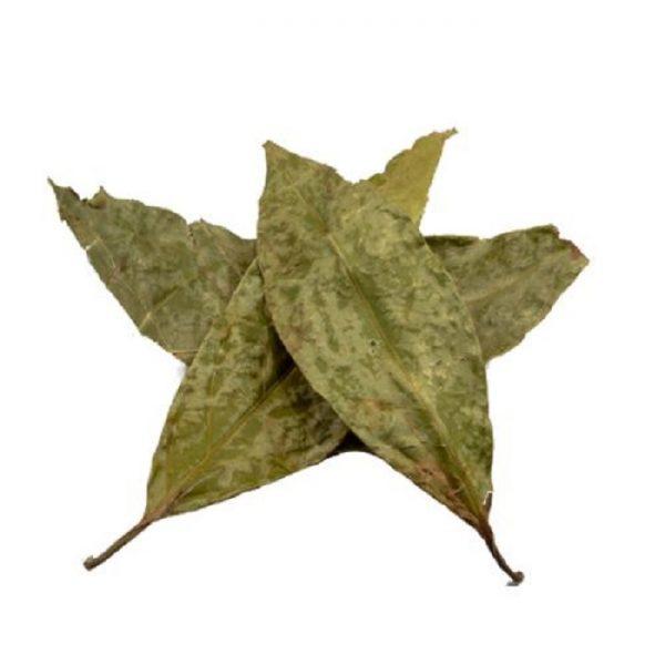Diplopterys cabrerana (chaliponga) leaves