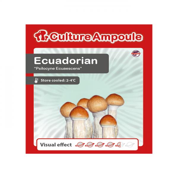 Buy Ecuadorian - Culture Ampoule online