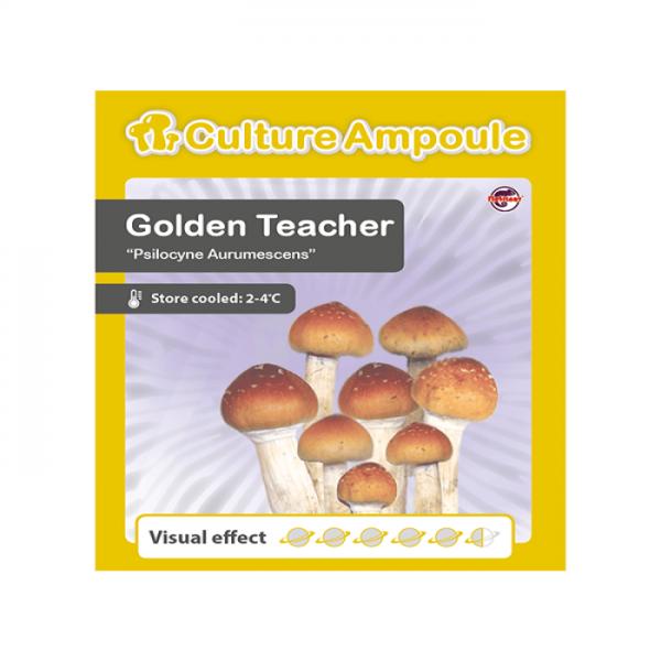 Golden Teacher - Culture Ampoule online