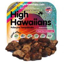High Hawaiians - Psilocybe Tampelandia