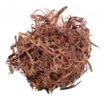 Mimosa hostilis - Inner root bark | Jurema Preta