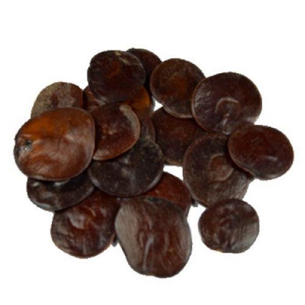 "Anadenanthera peregrina ""Yopo"" (10 grams)"