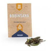 BOBINSANA (CALLIANDRA ANGUSTIFOLIA) 20 GRAMS