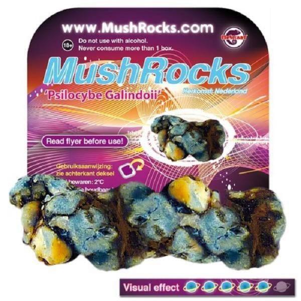 Mushrocks - Psilocybe Galindoi online