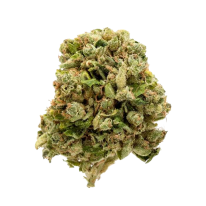Buy Pot of Gold Strain online