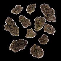Purple Genius - Outdoor - 10.03% CBDa