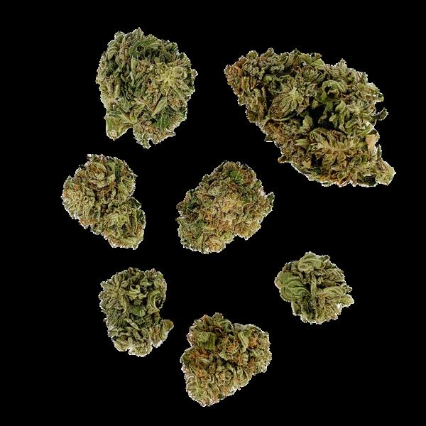 White CBG - Greenhouse - 10.15% CBGa - Nitrogen-Sealed